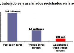 Sólo 1 de cada 4 trabajadores rurales está registrado