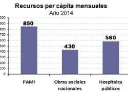PAMI recibe la mitad de los recursos que necesitaría